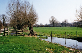 St Mary Bourne - The Bourne Rivulet